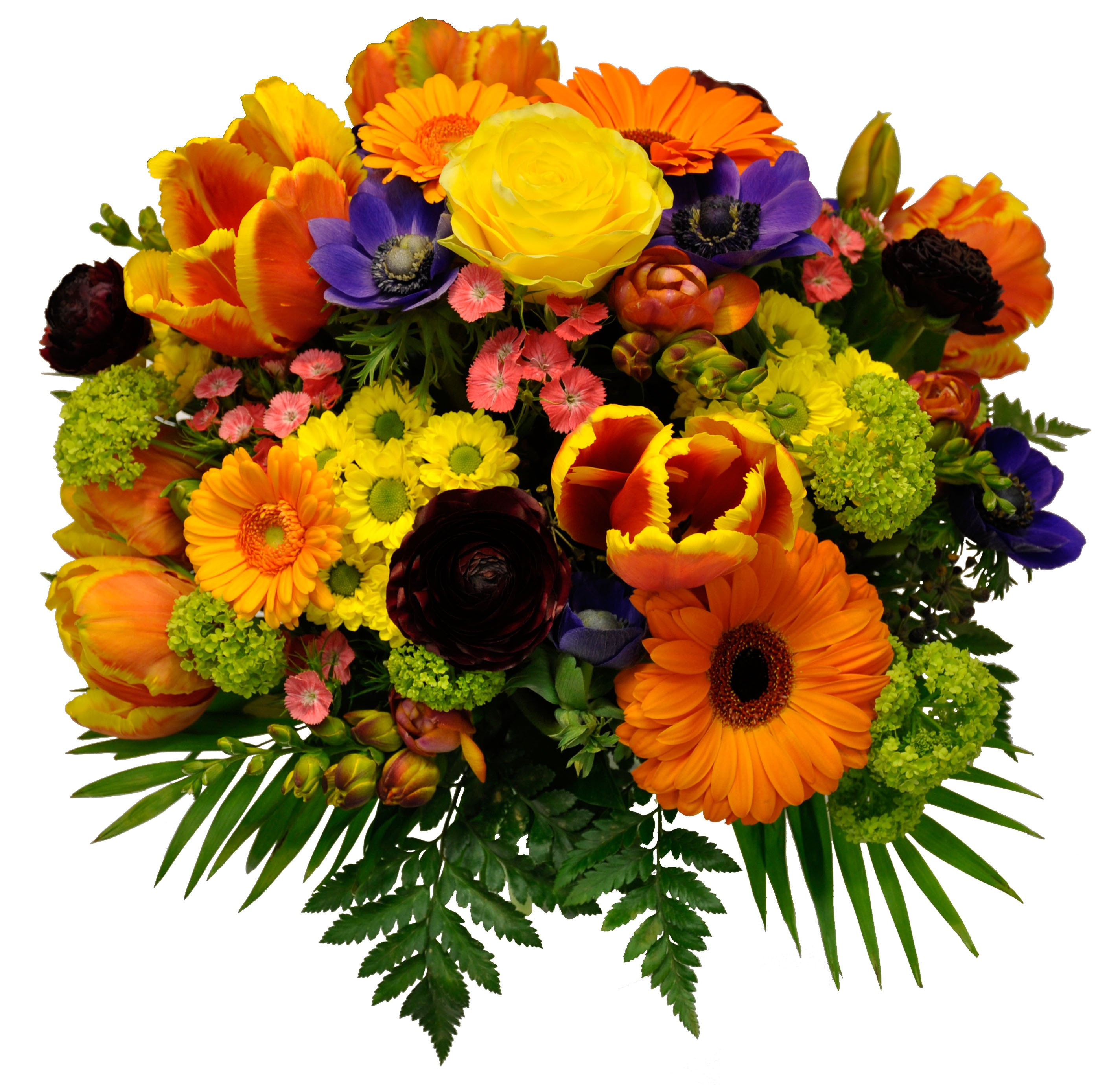 MOR003 Orange Gerbera Rose Bouquet (Paradiso)