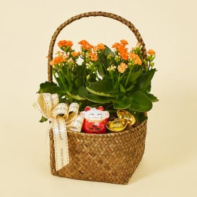 Basket of Prosperity